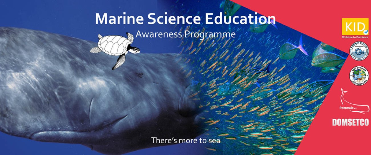 Marine Science Banner feb 16 type 2 1.0
